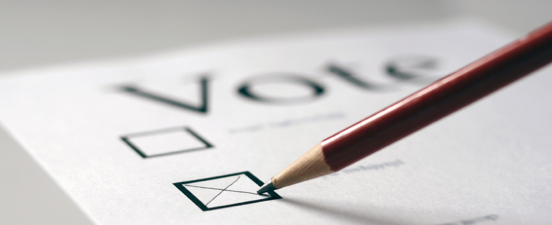 Pencil marking ballot